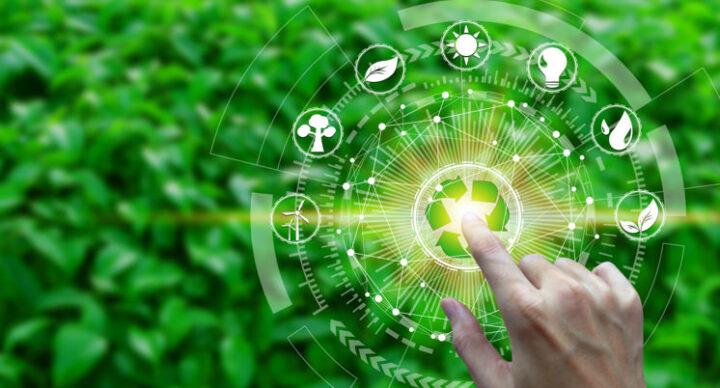 5 dicas de como preservar o meio ambiente no dia a dia