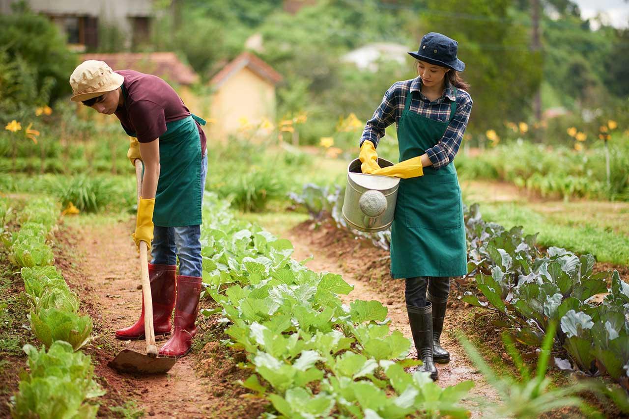 O Dia do Trabalhador Rural é comemorado no dia 25 de Maio no Brasil